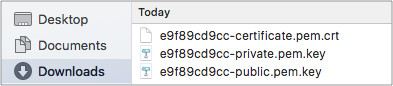 downloaded-certificates-iot